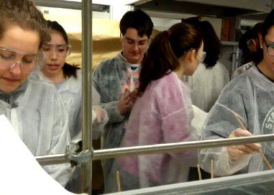 Actividad de laboratorio de Química en la UVA