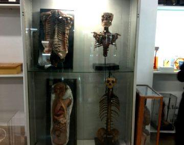 Visita al Museo de Anatomía