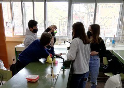 Experimentación en Física y Química